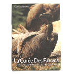 The Curia of the Fauves - DVD