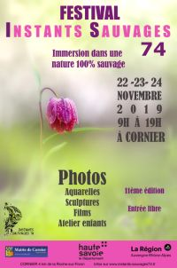 Festival INSTANTS SAUVAGES 74